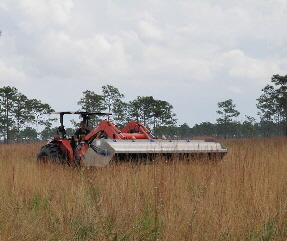 flail vac harvesting wiregrass